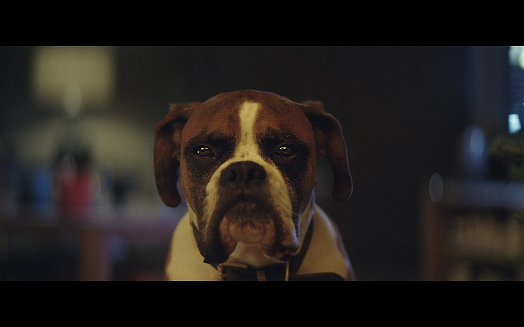 It's Christmas Advert Time – Which one is the best?